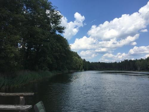 Лесной участок 3 Га на берегу озера в курорте Друскининкай, вместе с фирмой